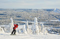 Woman down hill skiing in Lapland Finland Royalty Free Stock Photo