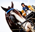 Woman driving a horse carriage Royalty Free Stock Photos
