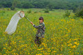 Woman entomologist the with butterfly net on meadow Stock Photos