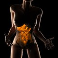 Woman entrails radiography scan black Royalty Free Stock Image