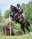 Woman eventer on horse is overcomes the Log fence Stock Photos