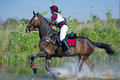 Woman eventer on horse is run in Water jump Stock Photos