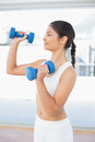 Woman exercising with dumbbells in fitness studio side view of a fit young bright Stock Photography