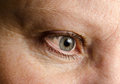 Woman eye closeup shot of a Stock Images