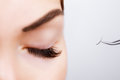Woman Eye with Long Eyelashes. Eyelash Extension. Lashes, close up, selected focus. Royalty Free Stock Photo