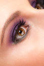 Woman eye with makeup Royalty Free Stock Photo