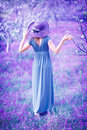Woman in fantasy garden dreamy fine art photo of seductive fairy romantic girl elegant long dress on purple lavender field sensual Royalty Free Stock Image