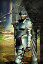 Woman fantasy knight Stock Photography