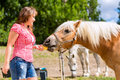 Woman feeding horse on farm pony Royalty Free Stock Photography