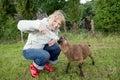 Woman feeding young sheep Royalty Free Stock Photo