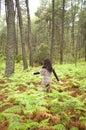 Woman through fern field Stock Photo