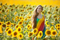 Woman in the field among sunflowers. Royalty Free Stock Photo