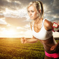 Woman fitness workout - running wheat field Royalty Free Stock Photo