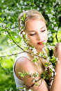 Woman by flowers on tree Royalty Free Stock Photography