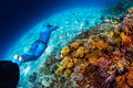 Woman freediver glides over vivid coral reef Royalty Free Stock Photo