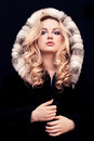 Woman in fur Stock Image