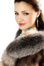 Woman in the furs Stock Image
