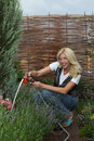 The woman gardener Stock Photography