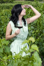 Woman with a glass of red wine in a vineyard Stock Photos