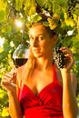 Woman with glass of wine in vineyard the sunshine she is the queen Royalty Free Stock Image