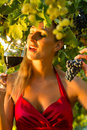 Woman glass wine vineyard sunshine wine queen Stock Photography