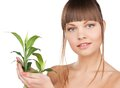 Woman with green sprout closeup picture of Stock Image