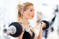 Woman in gym lifting weights exercising with dumbbells Stock Photo