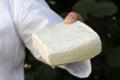 woman hadn holding block of sheep cheese Royalty Free Stock Photo