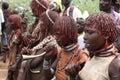 Woman from hamar tribe wedding ritual makeup ethiopia africa akka bull jumping Stock Images