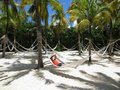 Woman in Hammock in White Sand - Palm Trees - Tropical Beach Royalty Free Stock Photo