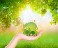 Woman hand hold eco friendly earth  design styles Royalty Free Stock Photo