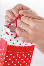 Woman Hand Holding Red Gift Bag with Present Royalty Free Stock Photo