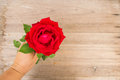 Woman hand holding red roses on wooden background. Royalty Free Stock Photo