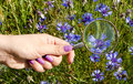 Woman hand nails magnifying glass blue flower ring Royalty Free Stock Photo