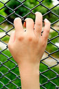 Woman hand on wire fence Royalty Free Stock Photo