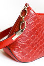 Woman handbag Royalty Free Stock Images