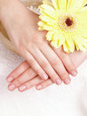 Woman hands Royalty Free Stock Photo