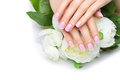 Woman hands with french manicure Royalty Free Stock Photo