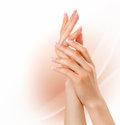Woman hands with french manicure concept Royalty Free Stock Photo