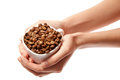 Woman hands holding coffee beans in cup isolated Royalty Free Stock Photo