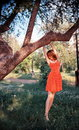Woman hanging from tree attractive in polka dot dress in park or countryside Stock Images