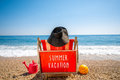 Woman in hat lying on the sunbed big red summer vacation concept back view with no face Royalty Free Stock Photos