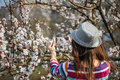 Woman in a hat makes a photos on smartphone flowering tree branc