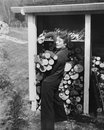 Woman hauling firewood Royalty Free Stock Photo