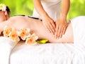 Woman Having Massage Of Body I...