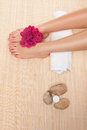 Woman having a spa treatment Royalty Free Stock Photo