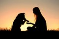 Woman and her dog shaking hands silhouette a girl is sitting outside in the grass with german shepherd silhouetted against the Royalty Free Stock Photography