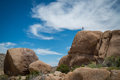 Woman hiking a boulder in Joshua Tree National Park Royalty Free Stock Photo