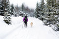 Woman hiking with dog, Karkonosze Mountains, Poland Royalty Free Stock Photo
