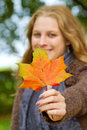 Woman holding autumn leaf colorful in the hand Stock Photos